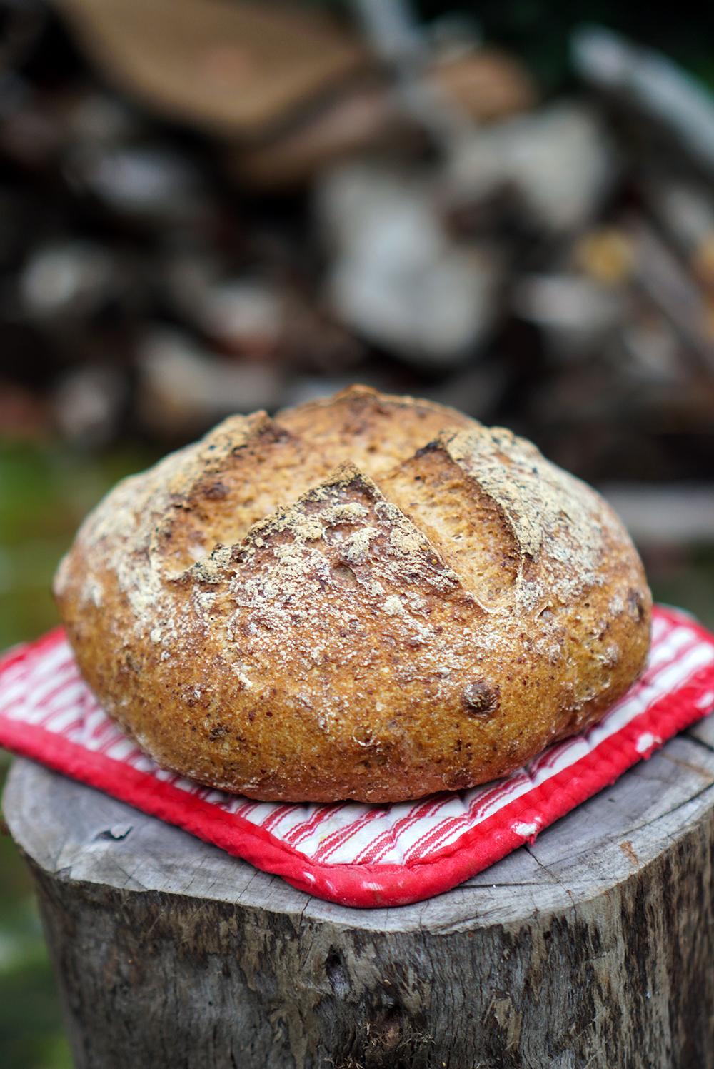 gluten-free sourdough bread